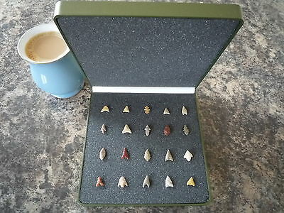 Miniature Neolithic Arrowheads x 20 in Display Case - 4000BC - (Q129)