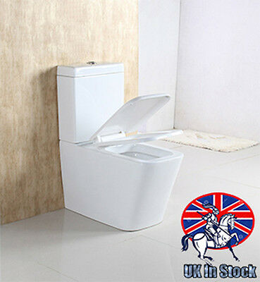 Dual Flush Back To Wall Toilet Modern WC Ceramic Pan Cloakroom Soft Close Seat