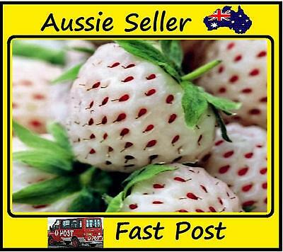 200pcs New White Strawberry Seeds Planting Nutritious Delicious Fruit Garden