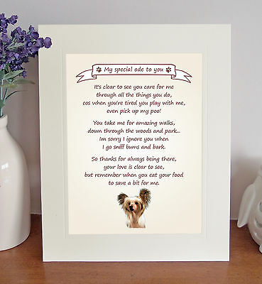 Chinese Crested Thank You FROM THE DOG Poem 8 x 10 Picture/10x8 Print Fun Gift