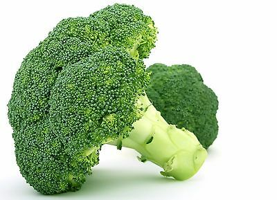 1g (approx. 350) broccoli seeds GROENE CALABRESE highly dietary vegetable tasty