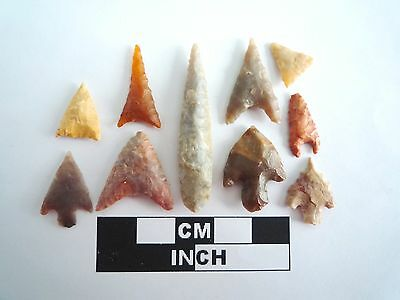 Neolithic Arrowheads x 10, High Quality Selection of Styles - 4000BC - (0398)