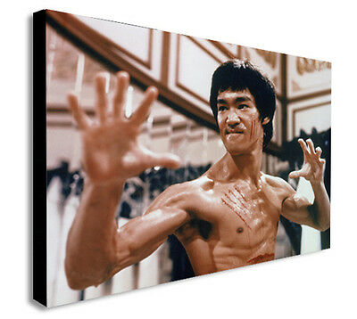 BRUCE LEE Martial Arts Instructor DRAGON Canvas Wall Art Picture  BL4  MATAGA .