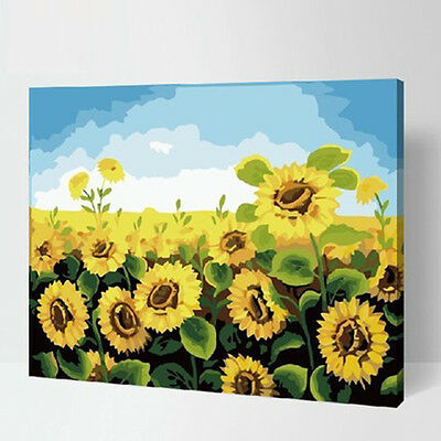 Sunflower Field DIY Number Painting Wall Paint Living Dinning