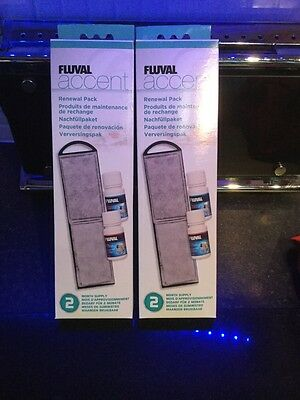 Fluval Accent Renewal Pack 4 Mounths New