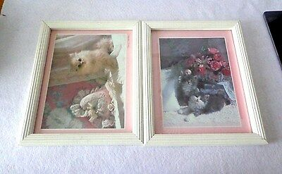 Collectible Kitten Prints -Set Of 2 - Wood Framed With Glass And Matted Finish