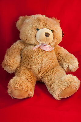 Large Keel Toys Cuddle Bear 35cm approx with tag