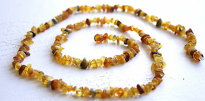 Genuine Unpolished   Baltic Amber Healing Necklace For Adults