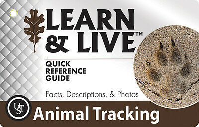 UST WG01868 Laminated Animal Learn And Live Cards - Track Shapes and Photos