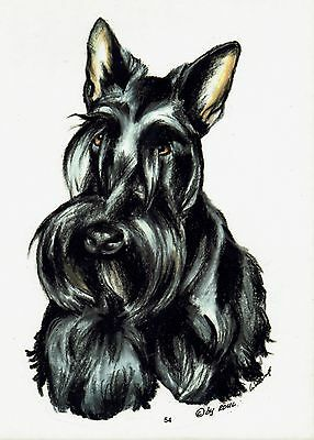 2 Aufkleber/Sticker Hunde Scottish Terrier [r054]
