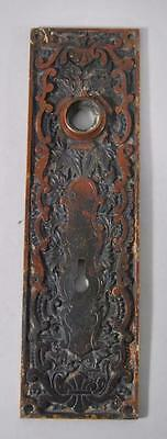 Antique Cast Brass Victorian Door Backplate