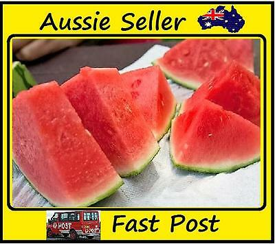 New Red Flesh Watermelon Seeds New Varietie of Water Melon  Edible Fruits 50 Pcs