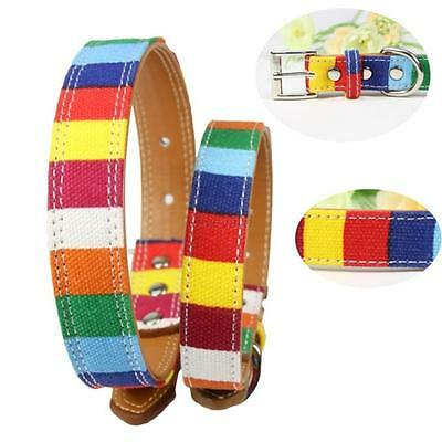 New Pet Dog Puppy PU Leather Rainbow Colorful Collar Adjustable Neck Buckle S-XL