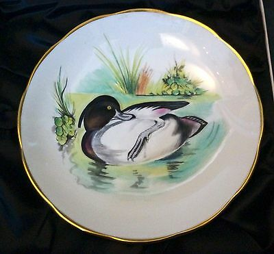 Wildfowl plate / plaque - Peter Scott Collection