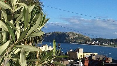 Llandudno cozy beach side cottage, three bedrooms, sleep up to 5 with 2 dogs