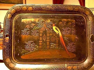 Antique Painted & Stenciled Toleware Tray Bird Of Paradise Circa 1840's