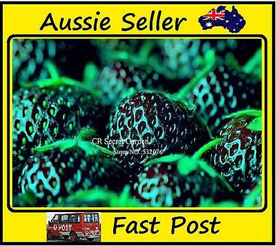 200pcs New Black Strawberry Seeds Planting Nutritious Delicious Fruit Garden