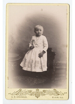 Cab Photo Beautiful Toddler From Elgin, Illinois, Studio Portrait By Sherman