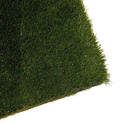 ALEKO Artificial Grass Roll of 2 x 3 ft Diamond Shape Monofil PE 6 sq ft