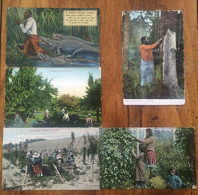 Hop Picking Indians 1909 RPPC postcards, A DARKY'S PRAYER, PULLING TURPENTINE