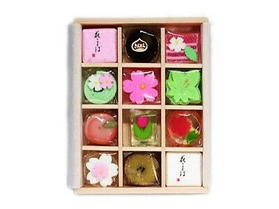 KYOGASHI Candy Jelly Traditional Japanese Sweets set Maiko From Kyoto Japan