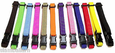 Lot of 12 Colors Nylon ID Collars Newborn Little Puppy Dog No D ring Collars