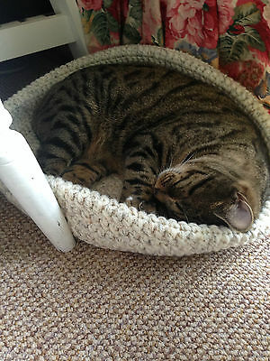 Cozy Pet Bed Crochet Handmade