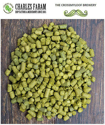 250g Hop Pellets.60TYPES PRICE MATCHED eg Citra Cascade Fuggles Saaz Galaxy Brew