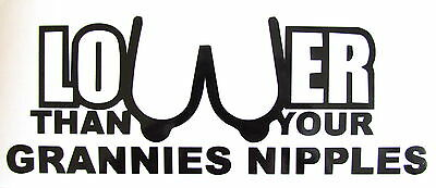 Lower Than Your Grannies... Funny Vinyl Decal Sticker Car Van Bumper Window Wall