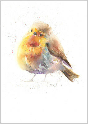 HELEN ROSE Limited Print LOVELY ROBIN wildlife bird art watercolour painting 311