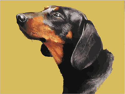 Dachshund Paint By Number Color Canvas Textured Print Reproduction