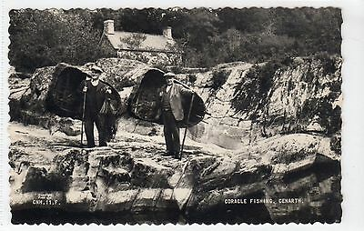 CORACLE FISHING, CENARTH: Carmarthenshire postcard (C11132)