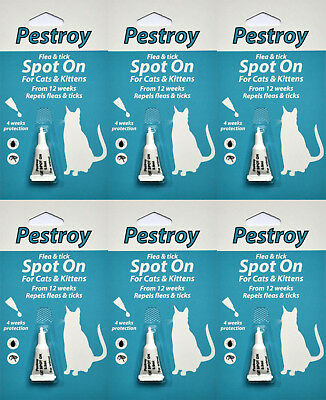 6 Pestrroy Flea and Tic treatment for Cats & Kittens *SPECIAL OFFER 5 + 1 FREE!*