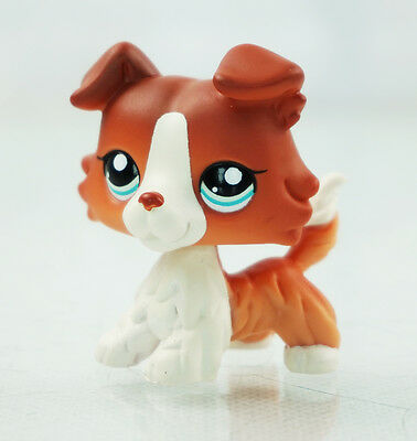 2'' Brown White Collie Dog Puppy Blue Eyes  Littlest Pet Shop LPS 1542 Kids Toys