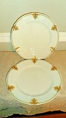 O.P. Co. SYRACUSE CHINA 2 DINNER PLATES RED GREEN PINEAPPLE GOLD TRIM 1904-1907