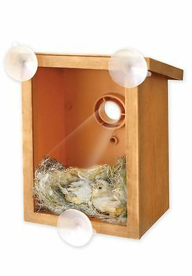Window Mount Spy Bird house for Nesting feeding