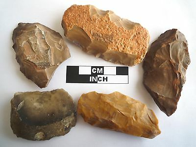 5 x Paleolithic Tools / Scrapers, Saharan Flint Artifacts - 30-70,000BC (0832)