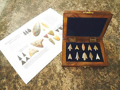 10 x Quality Neolithic Arrowheads in Wooden Box - 4000BC (0031)