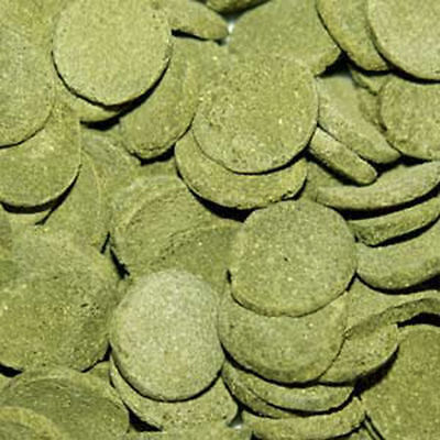Spirulina Algae Wafers 800gm Pack OSI FISH FOOD