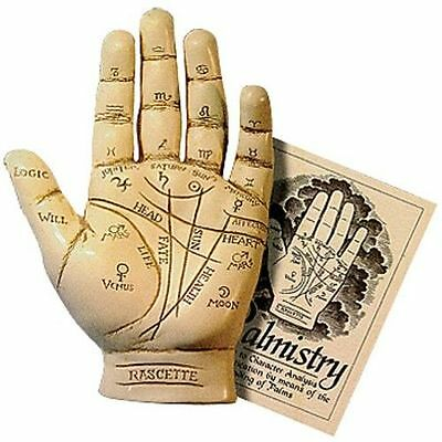Palmistry Hand Model Resin Sculpture w/Booklet Fortune Telling ~ Palm Reading