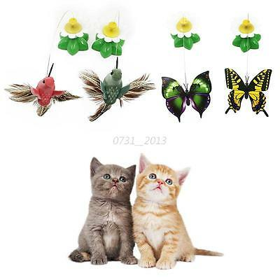 Pet Cats Electric Rotating Cat Toys Dog Flower Butterfly Birds Steel Wire Teaser