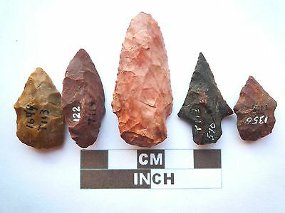 Native American Arrowheads x 5, Genuine Archaic Artifacts, 1000BC-8000BC (Y009)
