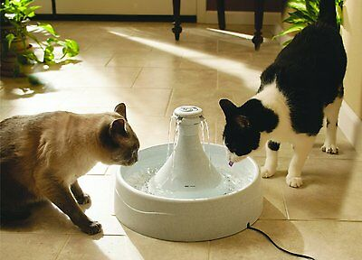 Pet Water Fountain Bowl Feeder Drinkwell Automatic Flow Dog Cat Safe Drinking 1
