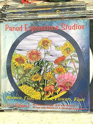 Paned Expressions Studios In Full Bloom-1 CD