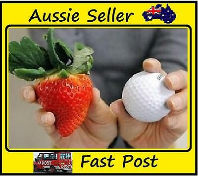 1000 Seeds Golf Ball Giant Strawberry Easy Grow Home Garden Seed
