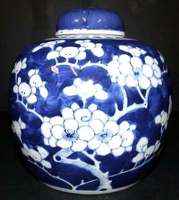 Antique Chinese Qing Dynasty LARGE Blue & white Prunus Kangxi Ginger Jar