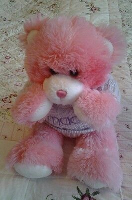 Macy's New York Pink Teddy Bear Super Soft Macys Poseable Magnetised 15""