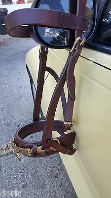 Lunging Halter, Leather and Brass, Draft Horse Size