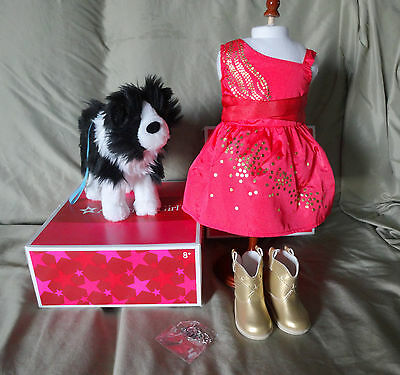 American Girl Saige Sparkle Dress Outfit& Dog Rembrandt - New - Free Shipping
