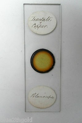 Antique Vintage Microscope Slide Chemistry Diactate Of Copper